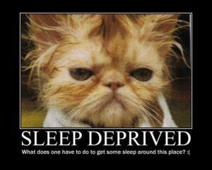 funny-sleep-21
